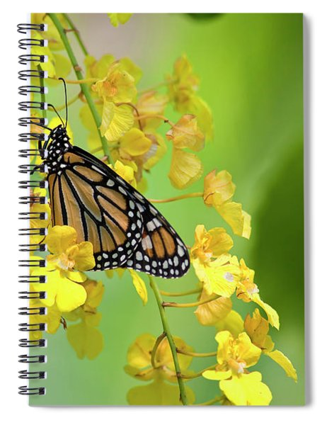 Monarch Butterfly On Yellow Orchids Spiral Notebook