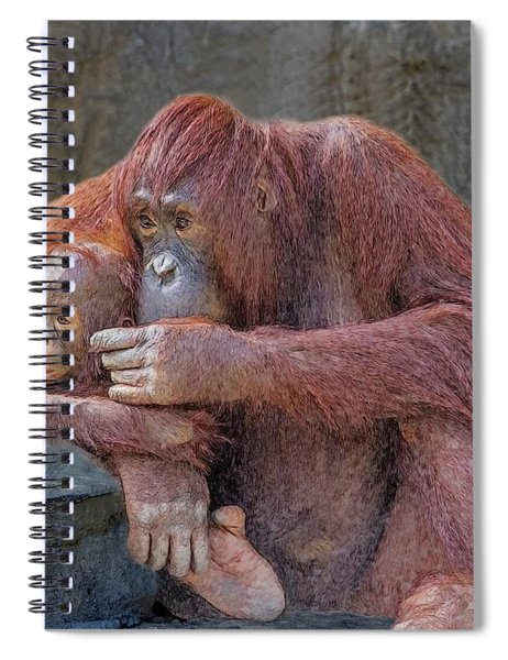 Motherhood 4 Spiral Notebook