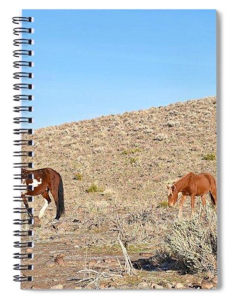 Mustangs Spiral Notebook