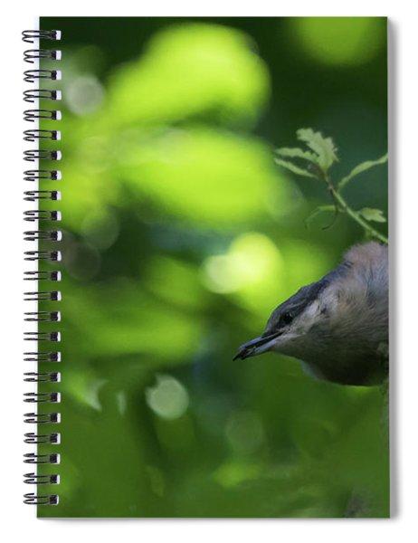 Nuthatch Spiral Notebook