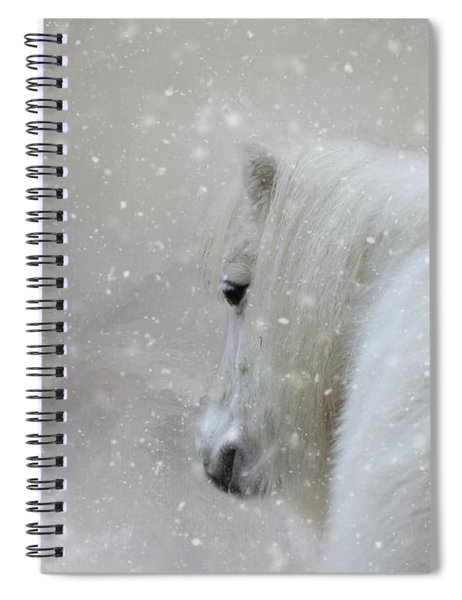 On A Cold Winter Day Spiral Notebook