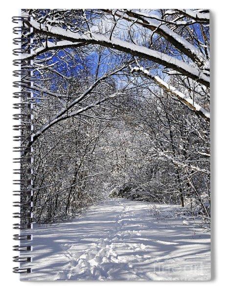 Path In Winter Forest Spiral Notebook