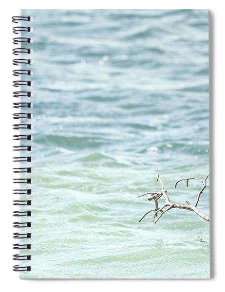 Perching Pelican Spiral Notebook