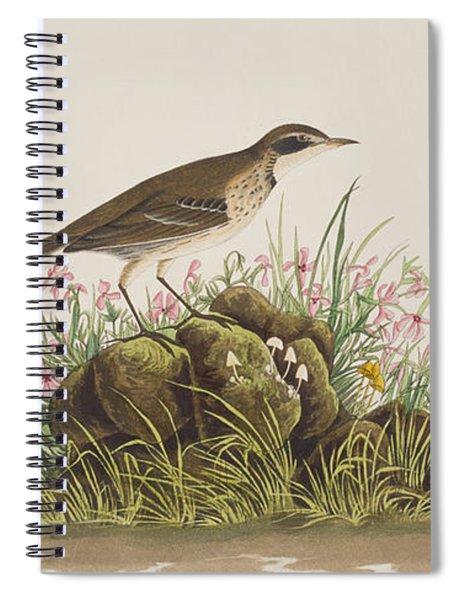 Prairie Titlark Spiral Notebook