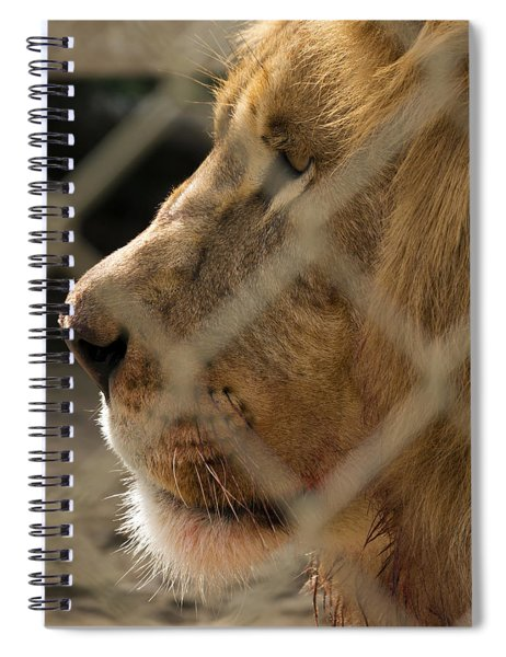 Profile Of A King Spiral Notebook