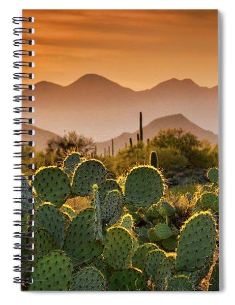 Pure Sonoran Gold  Spiral Notebook