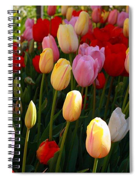Rainbow Spiral Notebook