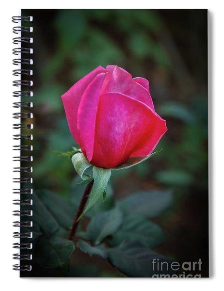 Red Bud Spiral Notebook