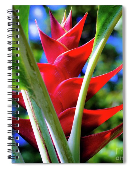 Red Heliconia Hawaii Spiral Notebook