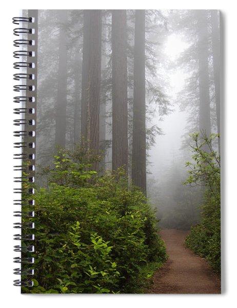 Redwood Grove Spiral Notebook