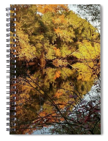 Reflections Of Trees Spiral Notebook