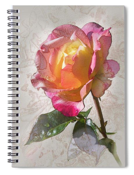 Rosa, 'glowing Peace' Spiral Notebook