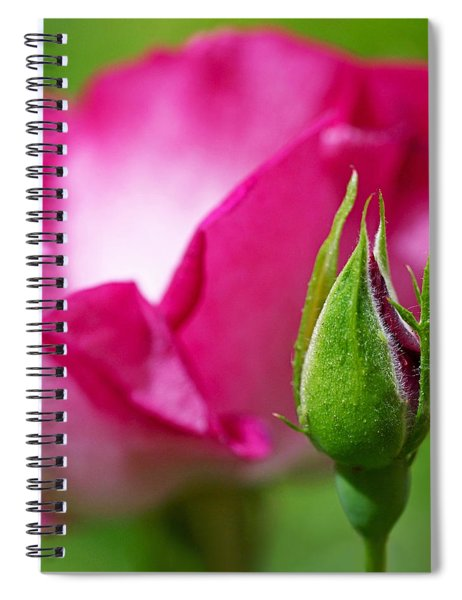 Budding Rose Spiral Notebook