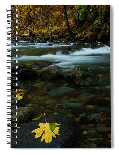 Scattered Seasons Spiral Notebook