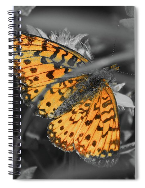 Silver Bordered Fritillary Spiral Notebook