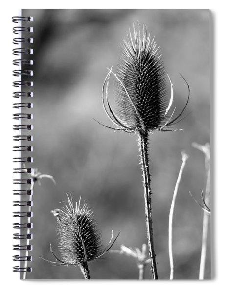 Simply Thistle Spiral Notebook