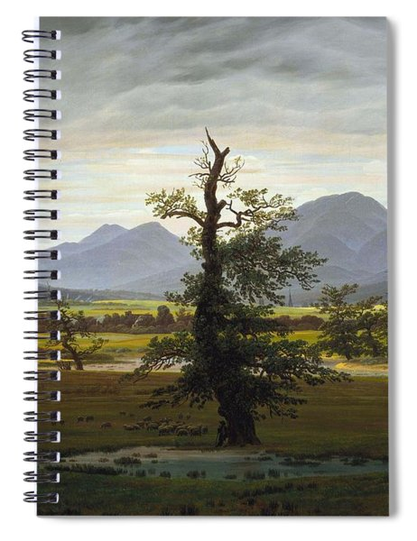 Solitary Tree Spiral Notebook