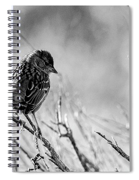 Snarky Sparrow, Black And White Spiral Notebook