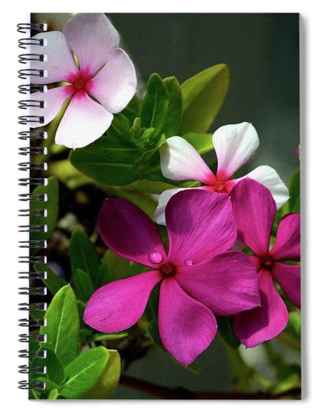 Summer Blossoms Spiral Notebook