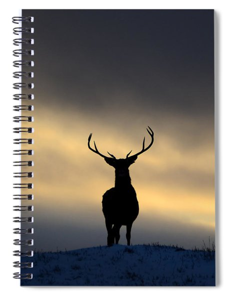 Stag Silhouette  Spiral Notebook