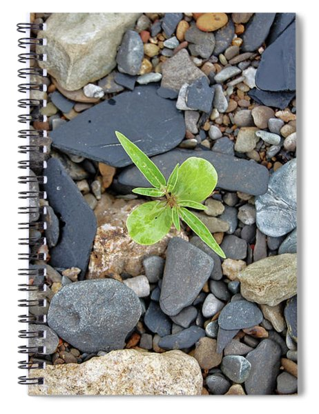 Stand Out From The Crowd Spiral Notebook