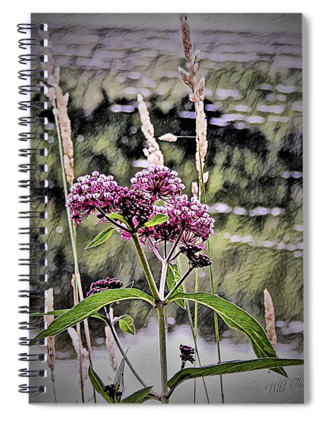 Swamp Witch Beauty Spiral Notebook