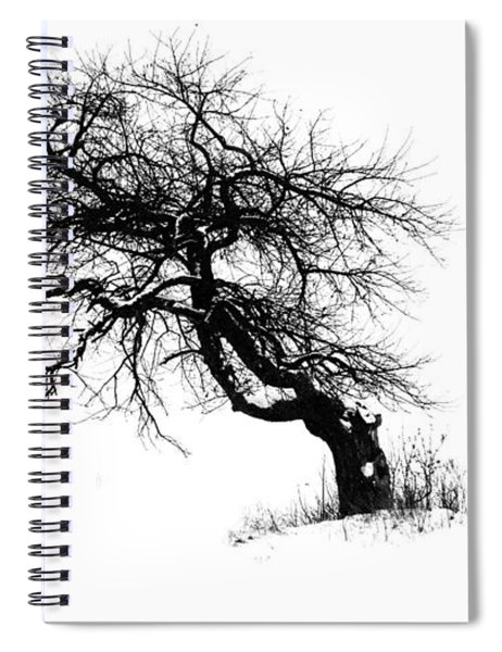 The Apple Tree Spiral Notebook