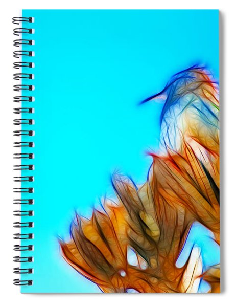 The Cactus Wren Spiral Notebook