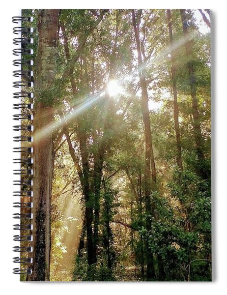 Shining Through The Trees Spiral Notebook