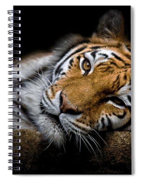 Tiger 2  Spiral Notebook