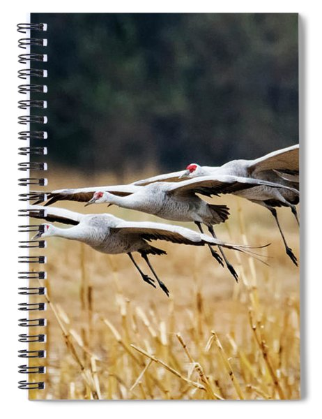 Tight Formation Spiral Notebook