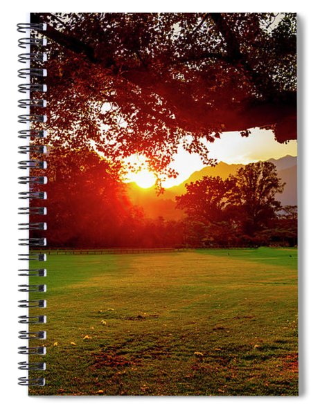 Tree And Sunset Spiral Notebook