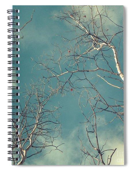 Tree Tops 4 Spiral Notebook