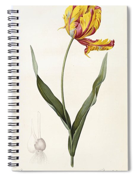 Tulip Spiral Notebook