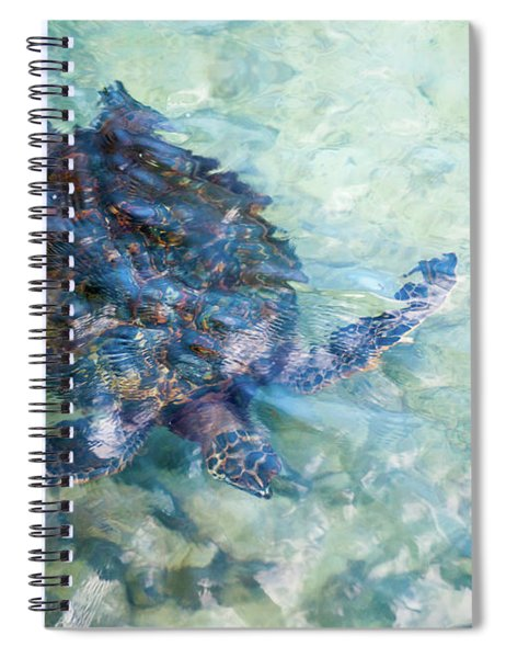 Watercolor Turtle Spiral Notebook