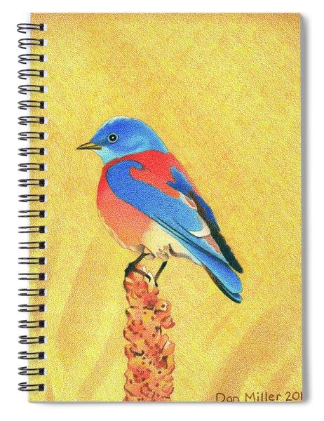 Western Bluebird Spiral Notebook