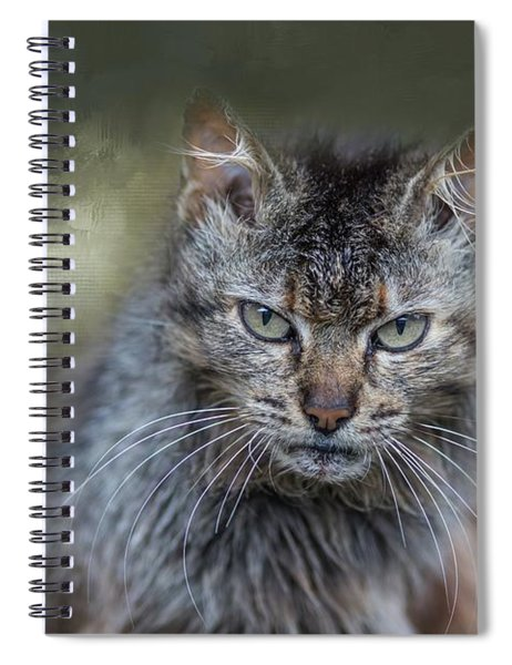 Wild Cat Portrait Spiral Notebook