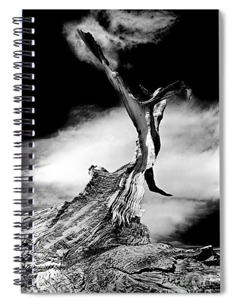 1000 Years To Create Spiral Notebook