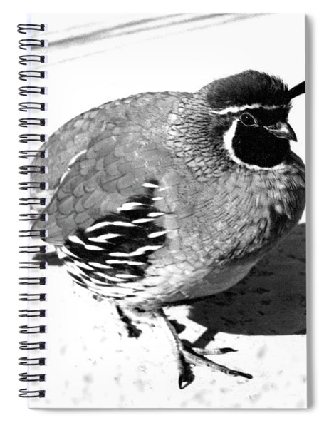 10_it Was Hard To Tell Spiral Notebook