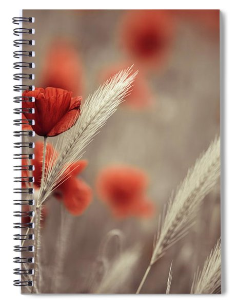 Summer Poppy Meadow Spiral Notebook