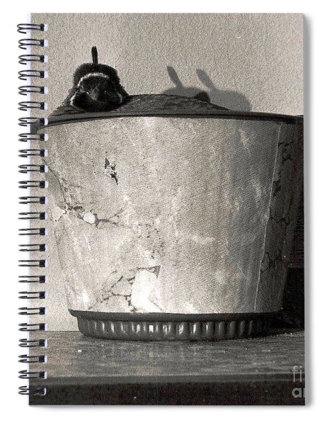 14_in The Wild, When Spiral Notebook