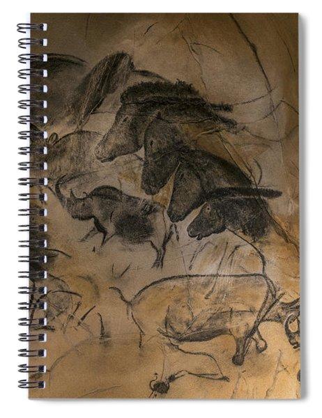 150501p084 Spiral Notebook