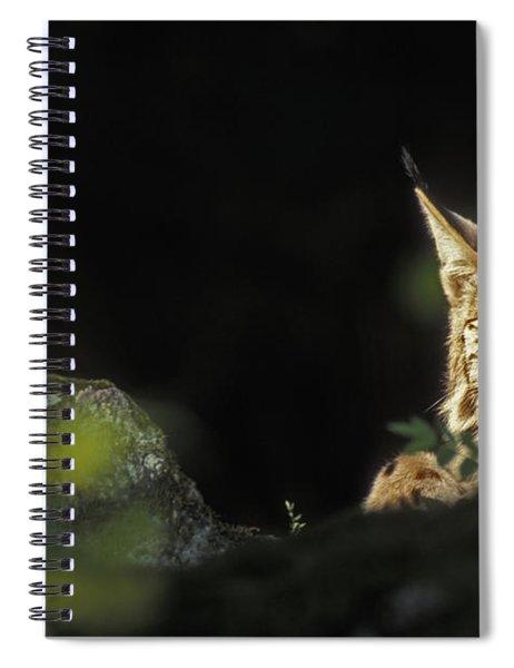 151001p105 Spiral Notebook