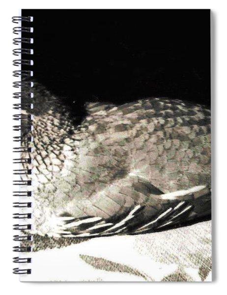 17_in A Few Days She Spiral Notebook