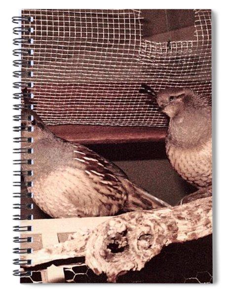 17_through The Niche And Stile Spiral Notebook