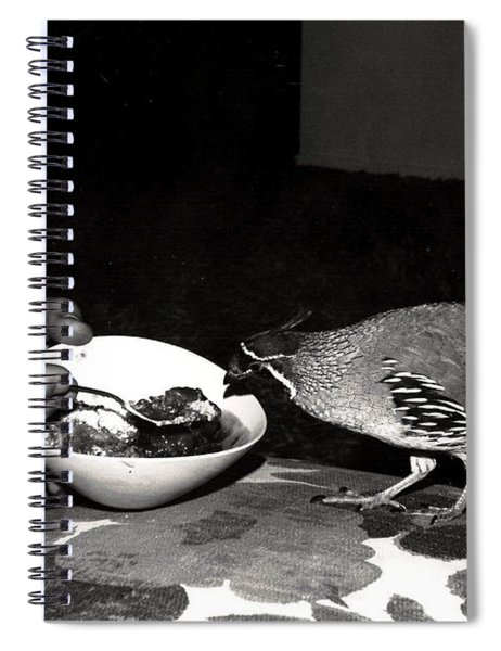 18_we Reviewed How Well The Spiral Notebook