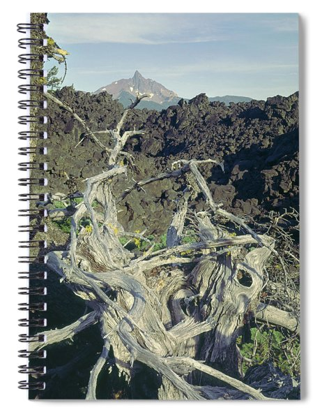1m5412 Mt. Washington Over Lava Fields Wa Spiral Notebook