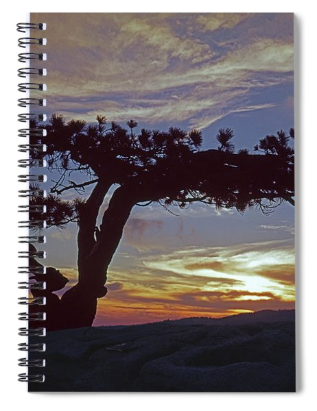 1m6704 Famous Yosemite Jefferey Pine Ca Spiral Notebook