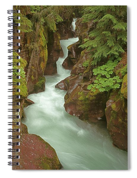 1m8115 Avalanche Gorge Mt Spiral Notebook