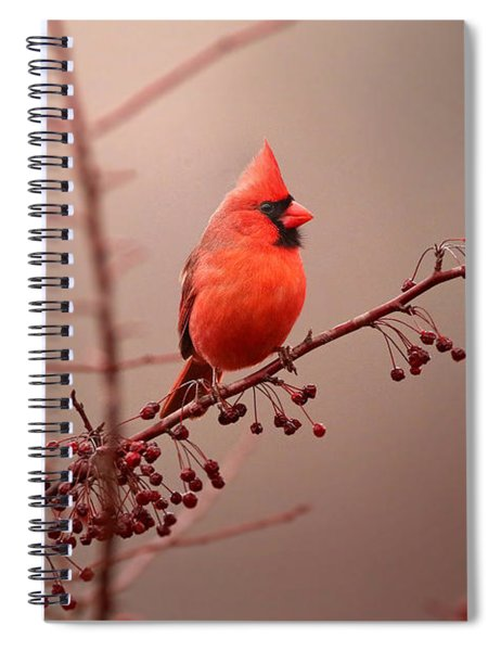 Bold Beauty Spiral Notebook